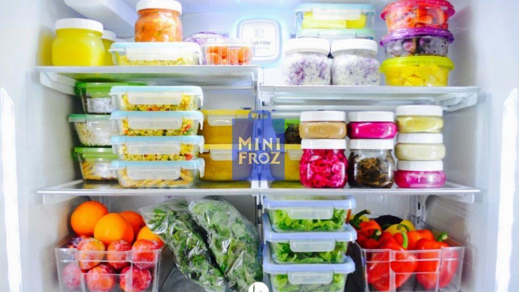 Distributor Frozen Food - Inilah Penyebab kulkas dingin tapi tidak membeku